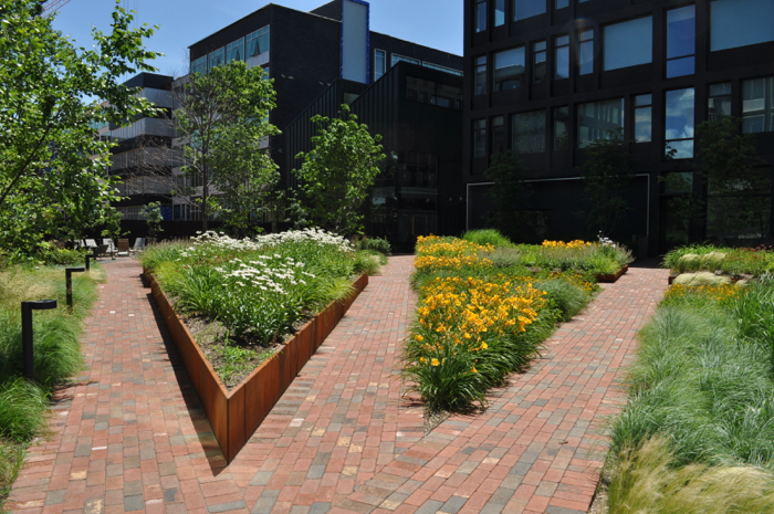 Clay pavers were an authentic choice for Harrison Commons