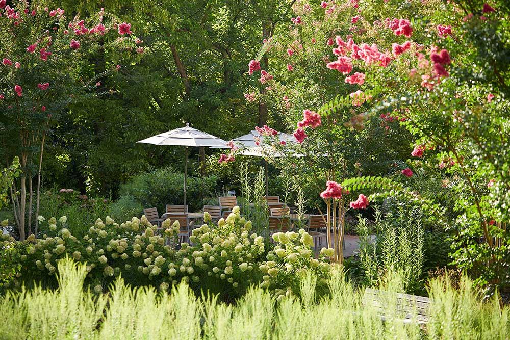 healing-garden-with-circular-paver-patio